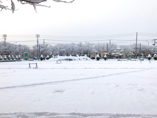 【青森】雪降ってる時の「傘」論争